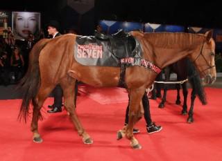 Venezia 73, Chris Pratt e Denzel Washington a cavallo sul red carpet de I Magnifici Sette. La gallery