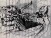 Contest-Batman-Pasquale-Russo-1