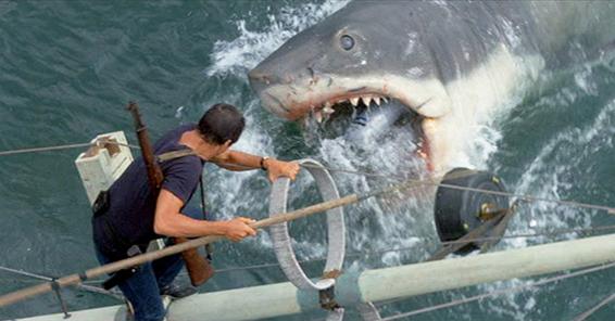 lo squalo