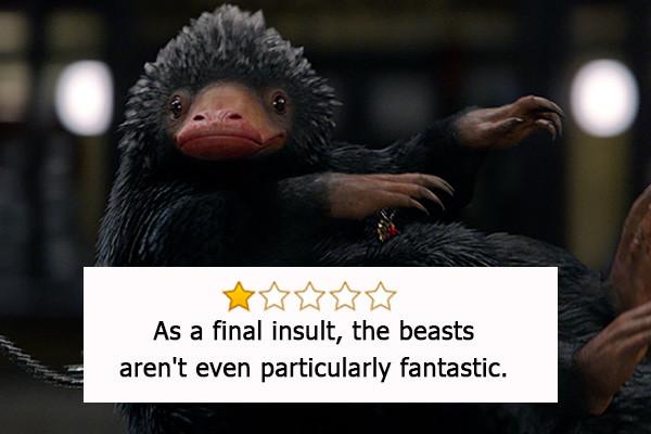 Animali Fantastici e Dove trovarli, Oscar a Coleen Atwood per i migliori costumi.- «Come insulto finale gli animali non erano nemmeno cos...