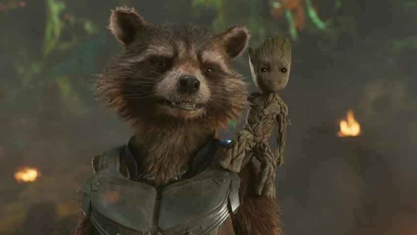 Rocket Raccoon - «Penso sia anche la storia di questo povero piccolo Rocket che è alla ricerca di un padre e alla ricerca di un qualcuno ...