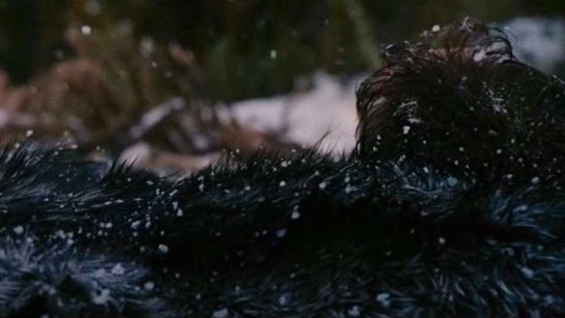 The Grey - Non solo saghe e supereroi: anche un film più impegnativo come quello diretto da Joe Carnahan ha scelto di nascondere una picc...