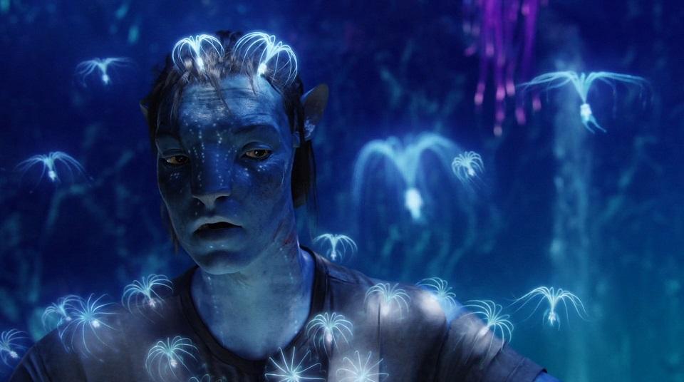 Sappiamo che Avatar di James Cameron ha i suoi detrattori, ma rimane ineccepibile tutto il lavoro tecnico svolto dall'autore per spi...